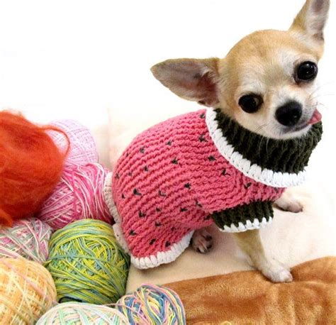 chihuahua sweater knitting pattern 17 best images about sweaters to knit crochet