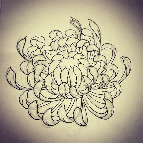 november flower tattoo 31 best chrysanthemum flower images on