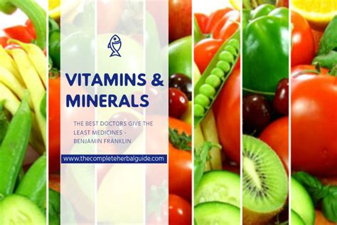 Vitamin Suplement Banner vitamins minerals