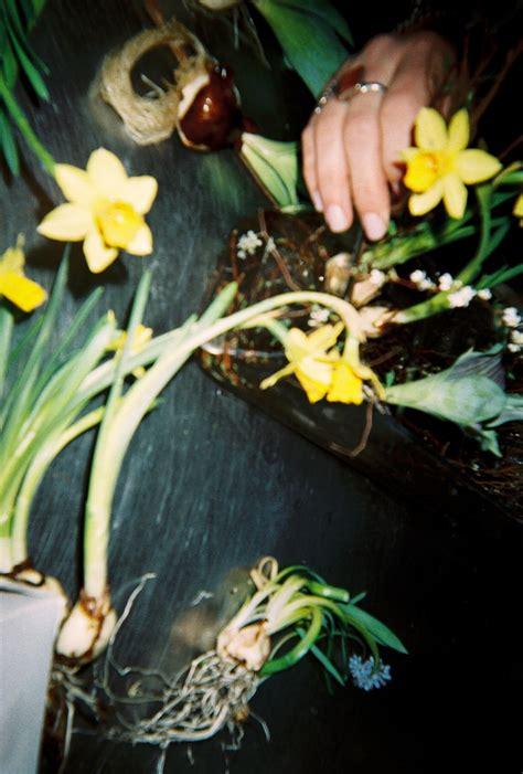 thompson florist max kaplan x etf emily thompson flowers