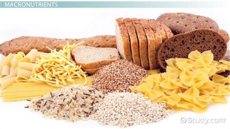 carbohydrates definition and importance macronutrients and micronutrients definition gallery