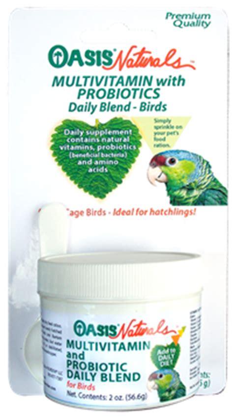 Permalink to Cockatiel Bird Cage Size – Image result for amazing cockatiel cage setup   Birds