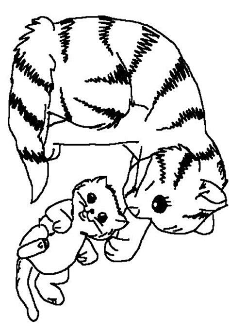 coloriage de chaton a imprimer az coloriage coloriage chat les beaux dessins de animaux 224 imprimer