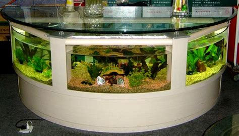 decoration aquarium maison d 233 coration aquarium maison encombrement place