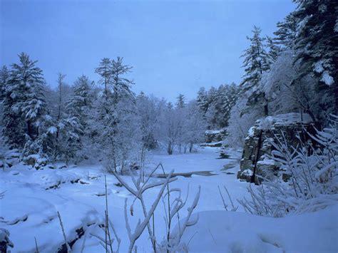 winter images winter scene christmas wallpaper 2735677 fanpop