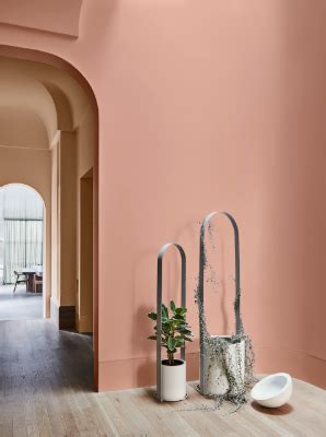 dulux colour forecast  wholeself trend dulux
