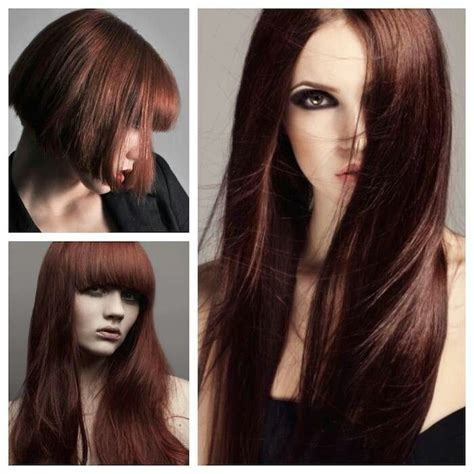 5vv hair color 25 beautiful cinnamon brown hair color ideas on