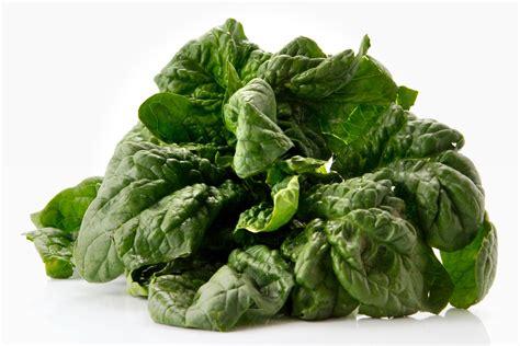 spinaci cucinare 20 ricette per cucinare gli spinaci vita donna