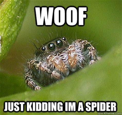 Misunderstood Spider Meme 16 Pics - woof just kidding im a spider misunderstood spider