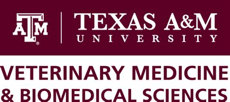 Summer Veterinary Student Research Fellows Program About Posters Presentations Tamu Presentation Template