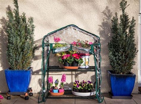 piccole serre da giardino mini serre da balcone serre costruire mini serre da