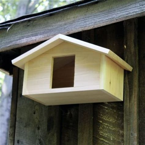 mourning dove house plans 1000 images about bird house ideas on pinterest modern birdhouses bird houses and