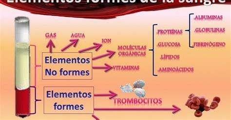 imagenes que lloran sangre explicacion fisiolog 237 a portafolio de evidencias quot elementos formes