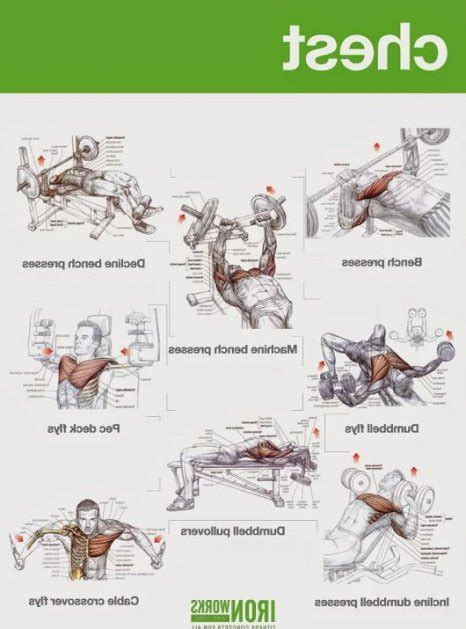 chest workouts without a bench chest workouts without bench 2 349 best chest and back
