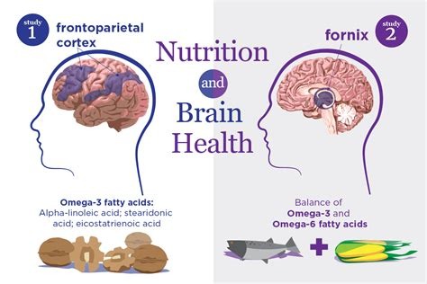healthy fats brain health studies link healthy brain aging to omega 3 and omega 6