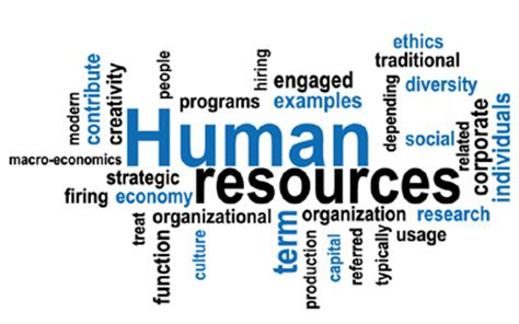 human resources generalist resume exle