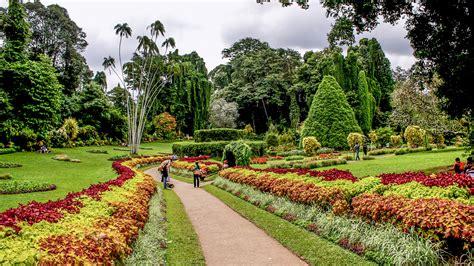 Kandy Botanical Gardens Peradeniya Botanical Gardens Kandy Andbeyond