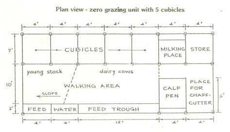 Barn Design Plans by All You Need To Know About A Zero Grazing Unit Graduate