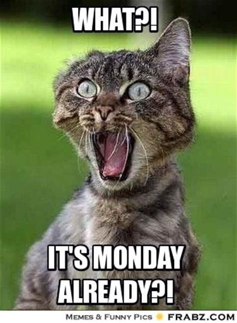Monday Meme Images - what it s monday already pictures photos and images