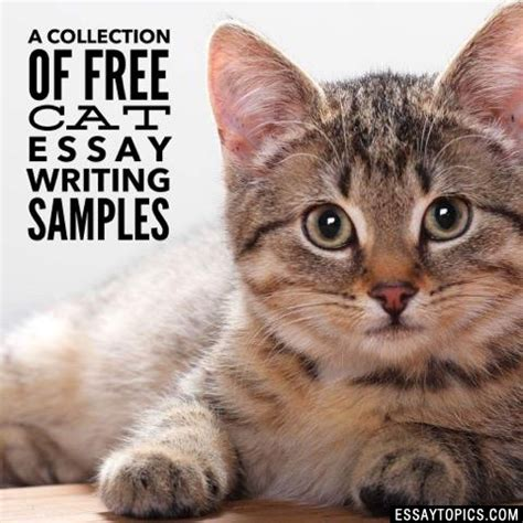 Essay About Cats by 50 Cat Essay Topics Titles Exles In Free