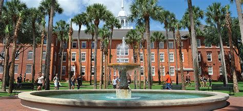 Usf Ta Mba Tuition by Top Colleges College Reviews And Ratings