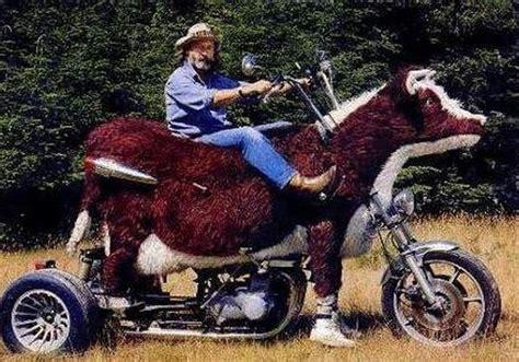 Lustige Bilder Motorrad by Most Pictures Strange Stuff 9 Pics
