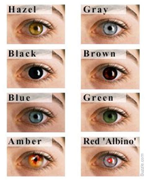 eye color chart: interesting facts about the different