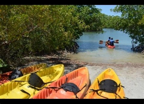 Oleta River Cabins by Miami An Unlikely Source Of Serenity Huffpost
