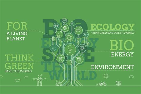 infographic template after effects download ecology infographics after effects template filtergrade