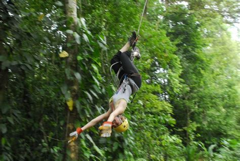 tarzan swing photo gallery for titi canopy tour go visit costa rica