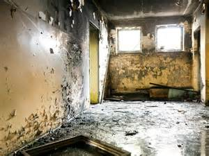 mold in homes black mold symptoms and health effects hgtv