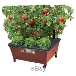 garden bed grow box watering planter vegetable plant