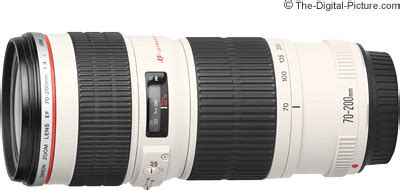 canon ef 70 200mm f/4l usm lens review
