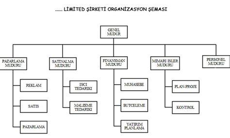 sirket organizasyon semasi oernegi oernek organizasyon