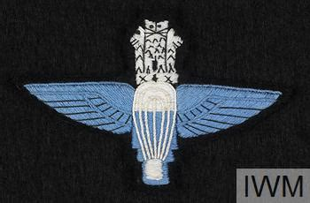 winz design indonesia badge trade indian parachute wings ins 8200