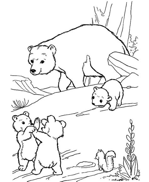coloring page bear cub polar bear coloring pages free coloring page polar bear