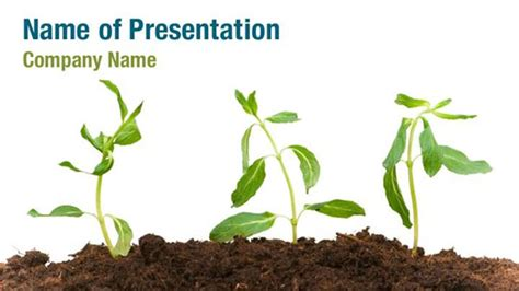 Growing Plant Powerpoint Templates Growing Plant Powerpoint Backgrounds Templates For Plant Powerpoint Templates Free