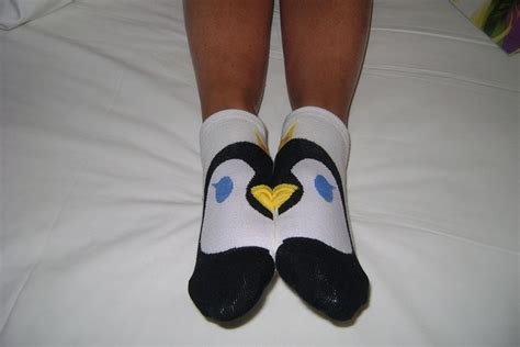 Animal High Knee Sock Penguin 17 best images about silly socks on
