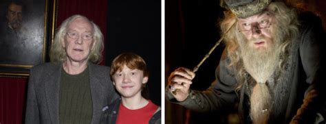 y the last book two 5 harry potter fan theories you ll think are so