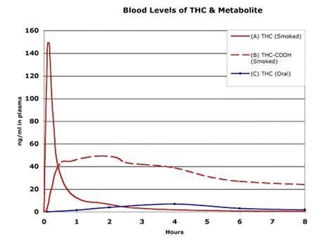 Effect Of Exercise On Thc Detox by Thc Levels Weight Loss Berry