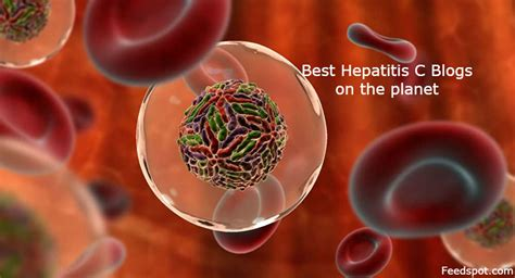 hepatitis c links best on the web hepatitis c new drug top 20 hepatitis c blogs and websites on the web