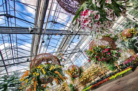Atlanta Botanical Gardens Deals Atlanta Botanical Garden Groupon Atlanta Botanical Gardens