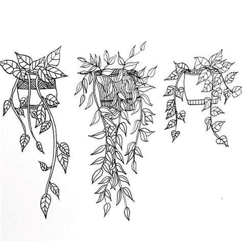 Drawings Of Leaves And Vines
