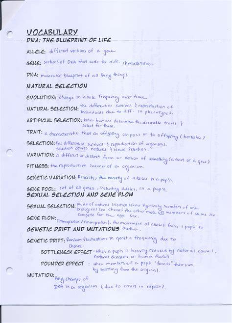 Speciation Worksheet by Speciation Worksheet Lesupercoin Printables Worksheets