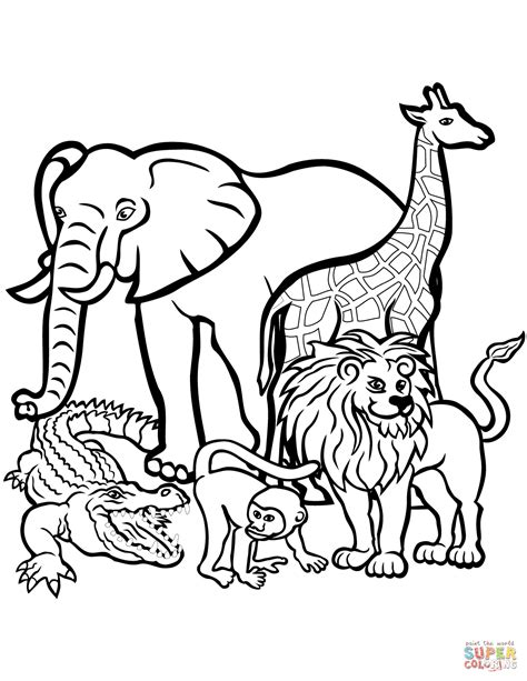 Animal Safari Coloring Pages by Safari Animals Coloring Pages Real Animal Coloring
