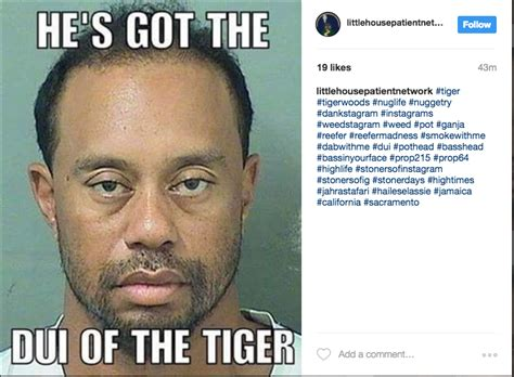 Tiger Woods Meme - tiger woods memes that make memorial day unforgettable