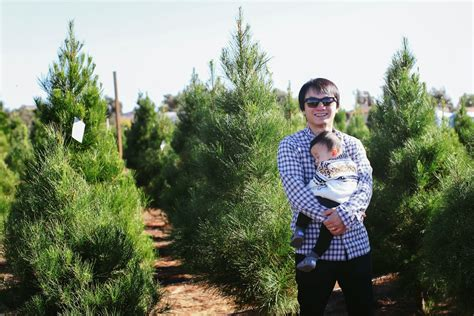 the parker project family christmas tree farm san diego