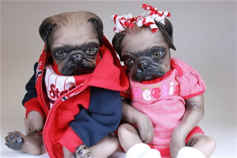 pug clothes for babies pug baby doll reborn babies bountiful baby