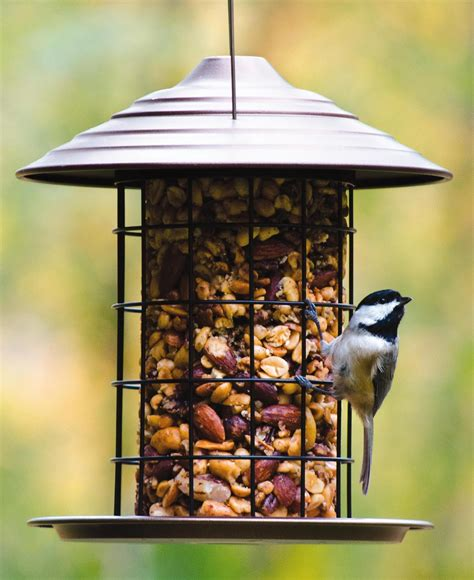 wild birds unlimited wild birds unlimited tidy cylinder