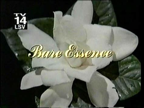 bare essence bruce boxleitner linda evans genie